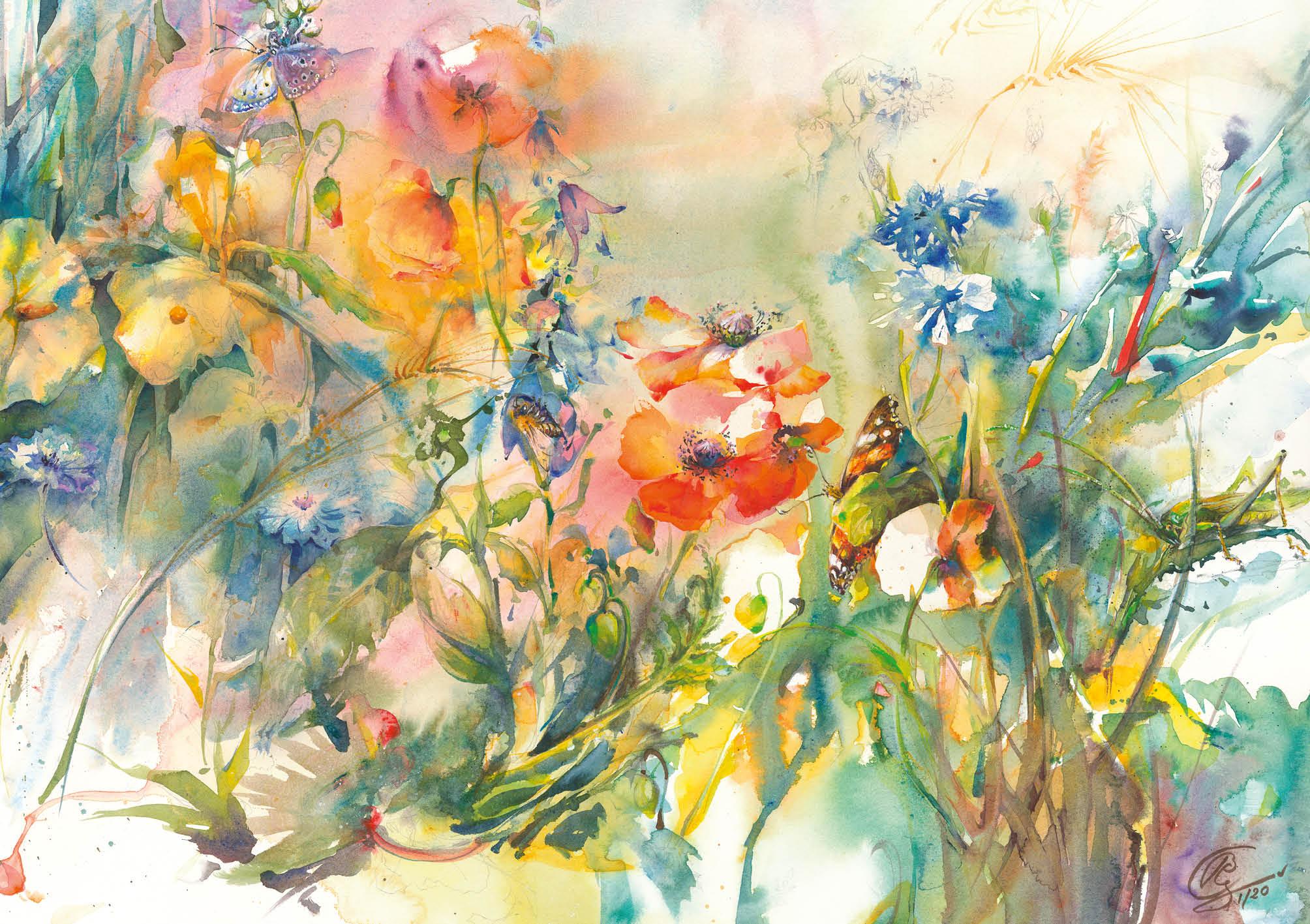 Blumensamen-Karte - Insekten am Wiesenrand