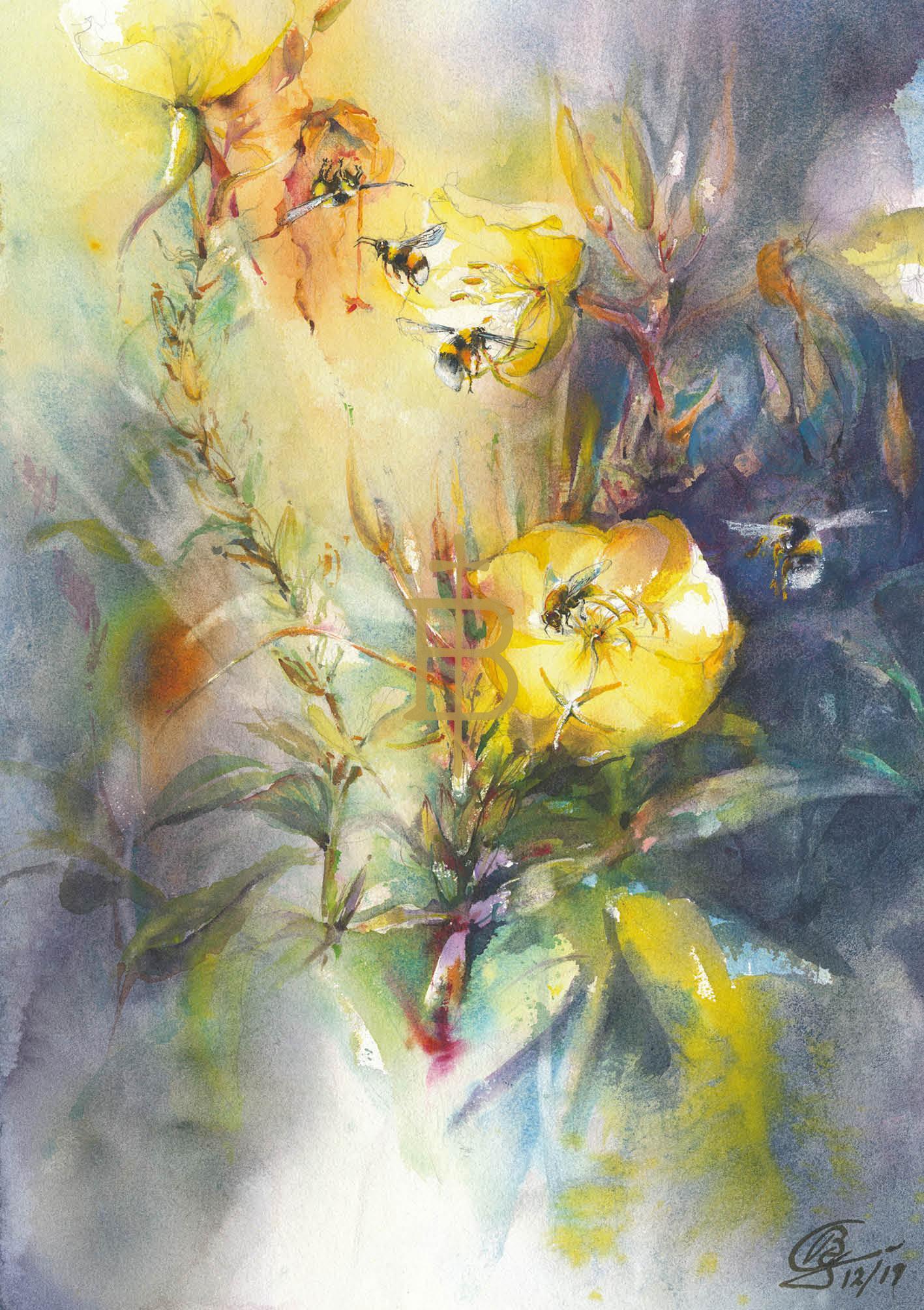 Blumensamen-Karte - Nachtkerzen und Besucher