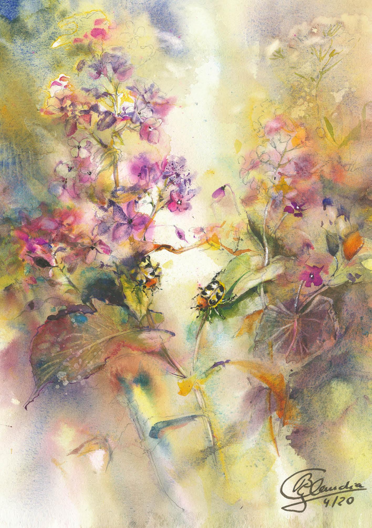 Blumensamen-Karte - Zwei Pinselkäfer